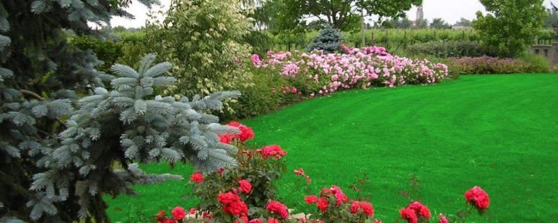 Giacometti Piante e Giardini