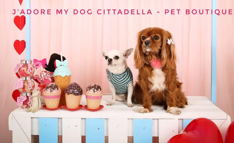 J'adore my Dog Cittadella – Pet Boutique