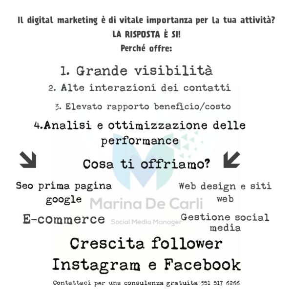 Marina de Carli social media manager